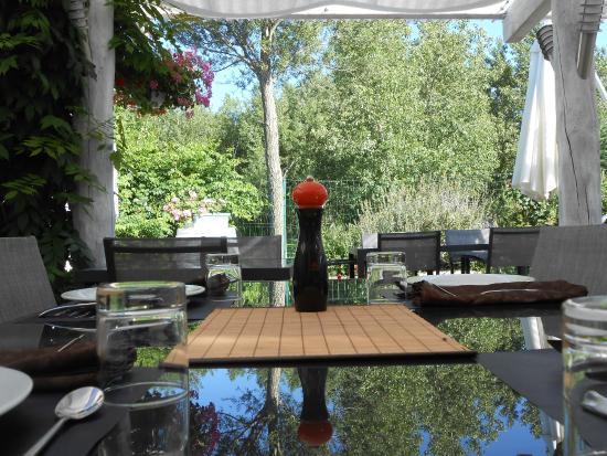 Ferme de Janou: terrasse hombragée