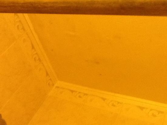 Stone Gable Inn: Black mold room102