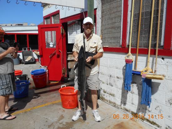 "Fisherman's Wharf: ""Pool Winning"" Kingfish, Half Eaten By Shark, 29.4 lbs"