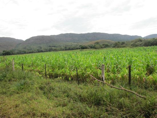 Serra do Lenheiro