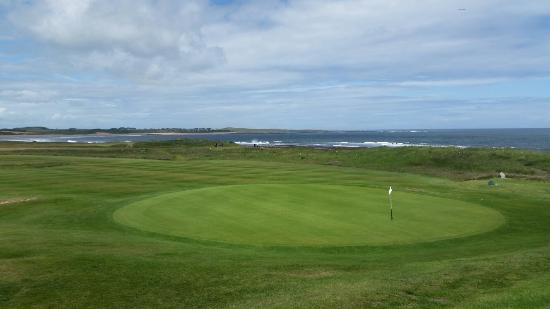 Embleton, UK: Dunstanburgh Castle Golf Club