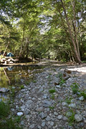 Riverside Campground and Cabins: big sur river runs through campground
