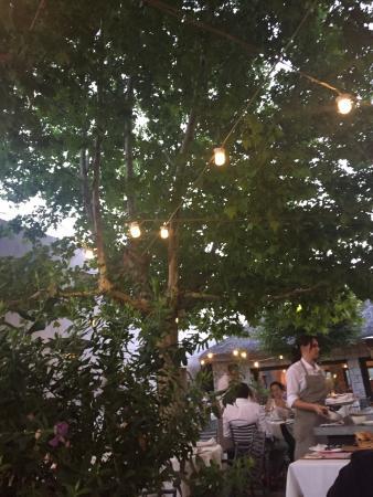 Burrata con tomate de la huerta en la terraza fotograf a for Restaurante terraza de la 96 barranquilla