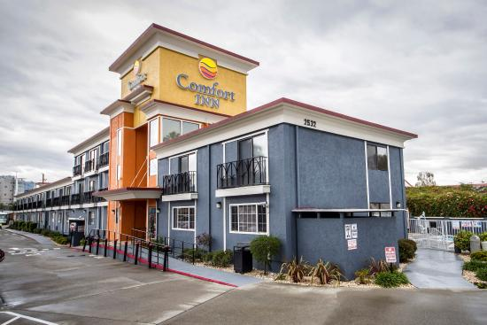 Comfort Inn Castro Valley Ca Updated 2016 Motel