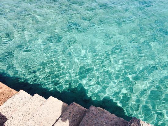 Isla de Lobos : photo6.jpg