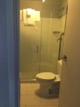 Toilet / disability shower - Picture of SpringHill Suites Chicago ...