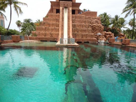 The C At Atlantis Autograph Collection Hotel Nau Bahamas