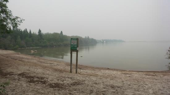 Hecla Provincial Park: The beach is lovely and within walking distance from the campgrounds