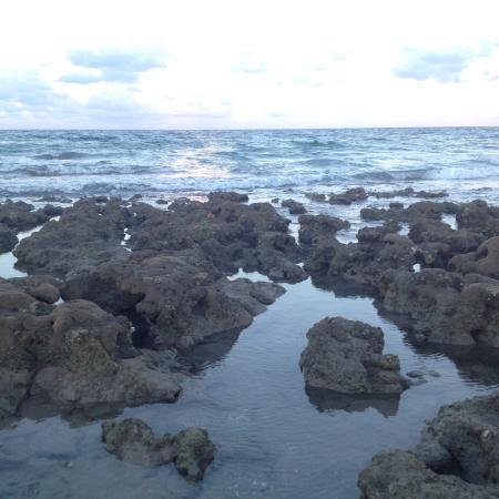 Bathtub Reef Beach: photo0.jpg
