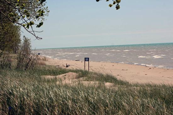 Long Point Provincial Campground: View from the campsite