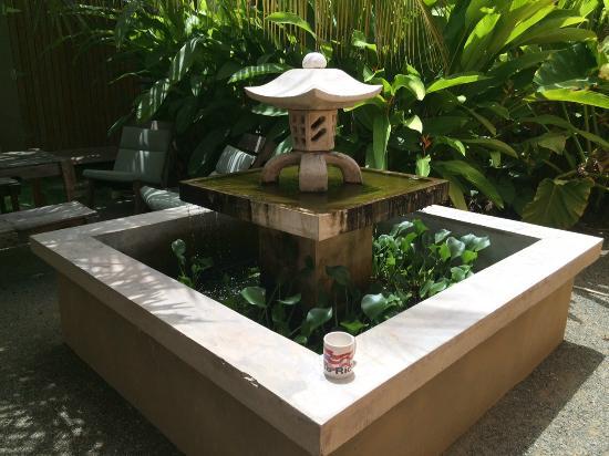 Casa de Amistad garden fountain