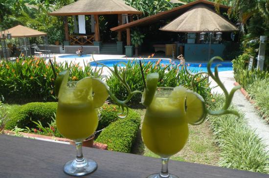 Hotel Playa Espadilla: Vista desde Habitación