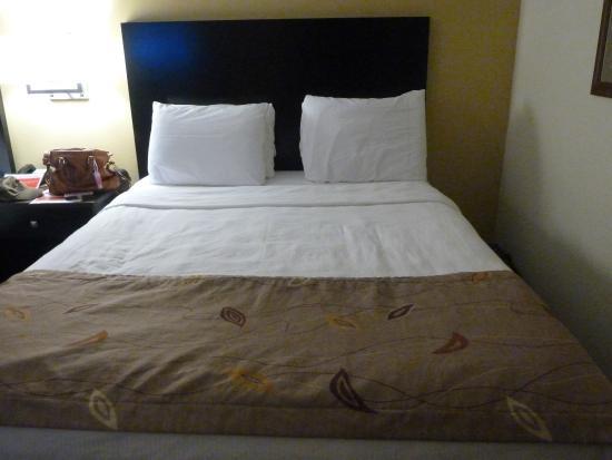 Ramada Wisconsin Dells: queen bed