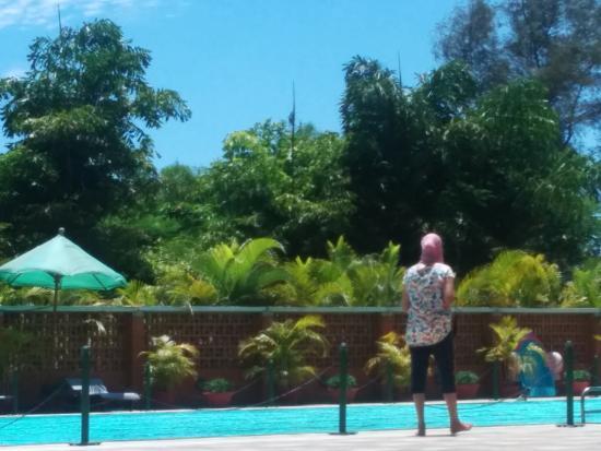 Sparrow Pool Picture Of Olde Bangalore Hotel Resort Bengaluru Tripadvisor