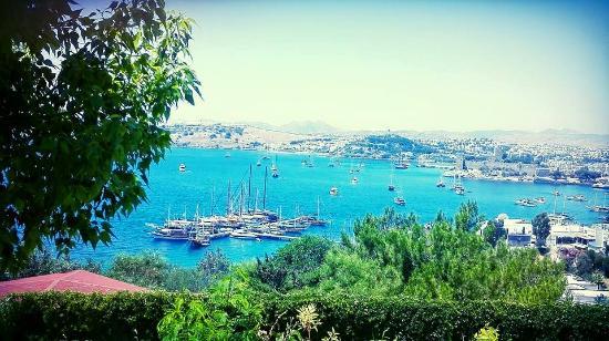 Hotel Manastir: View from hotel