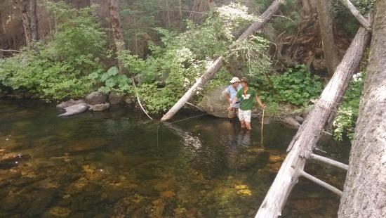 Yosemite Sierra Fly Fishing : fishing in the water