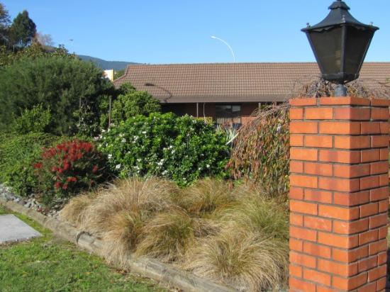 Amber Court Motel: Our front gardens