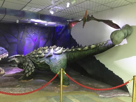 Central Museum of Mongolian Dinosaurs: photo2.jpg
