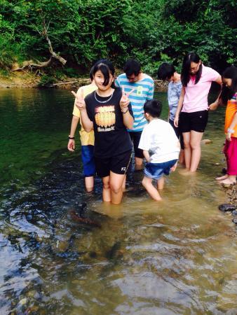 Kundasang, Malaysia: Kinabalu Pine Resorts