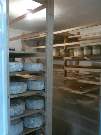 Oolite Cheese Company: Ripening room