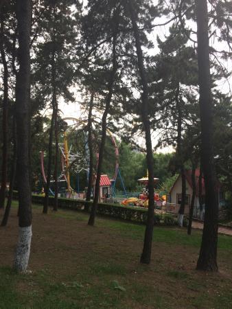 Wangxi Park: Аттракционы