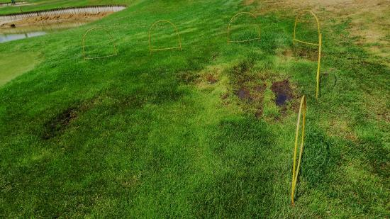 Golf Club Castelconturbia: Fairway Yellow 8