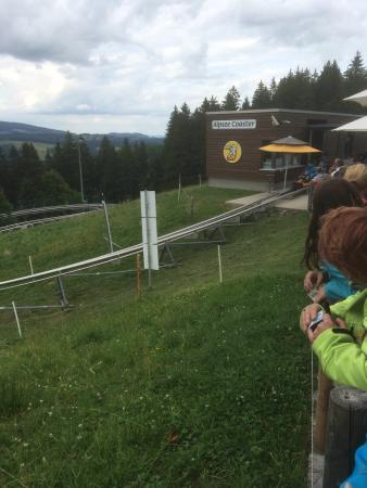 Alpsee Bergwelt: photo0.jpg