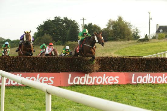 The hurdles at Limerick Racecourse