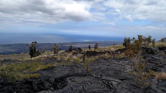 Keaau, Hawái: Native Guide Hawaii