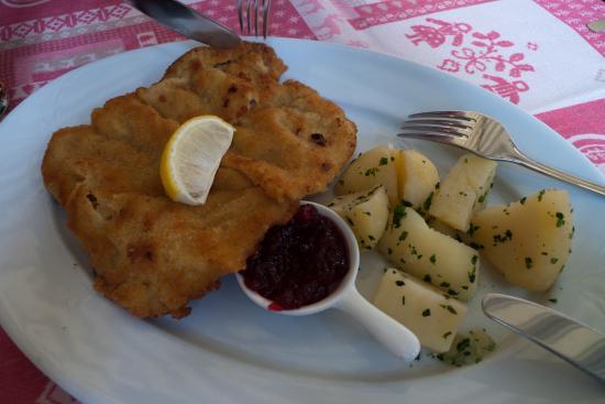 Gruner Baum: Viel schnitzel