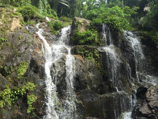 Silk Grass, Belize : Waterfall expedition on July 8, 2015