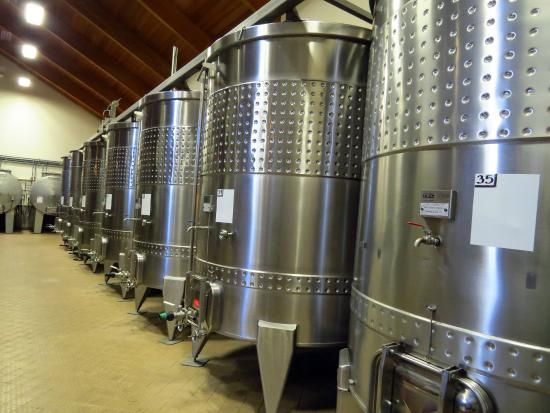 Domaine Drouhin Oregon: Stainless Tanks