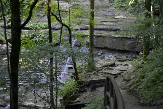 Hiking Cub Lake Trail Picture Of Natchez Trace State Park