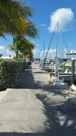 Marathon Marina and RV Resort: One of the nicest marinas in the Keys