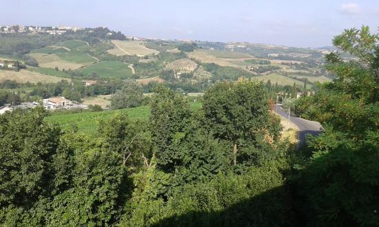 Montespertoli, Italien: colline