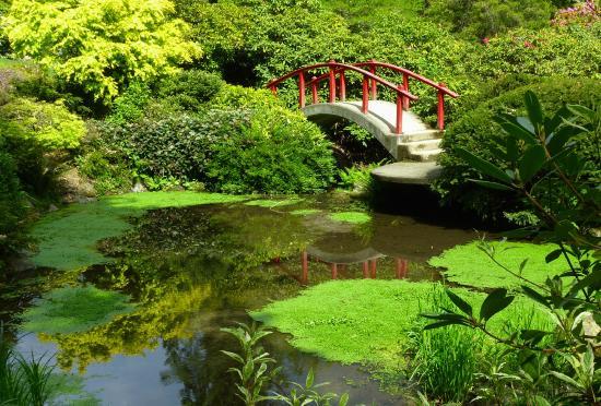 Kubota Garden: Garden Bridge