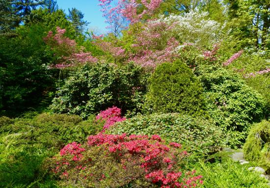 久保田花园