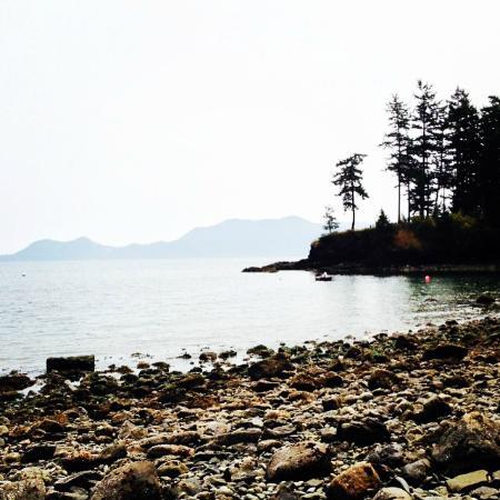 Orcas Island Bayside Cottages: Beach