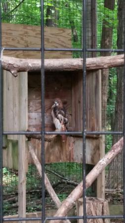Kalamazoo Nature Center