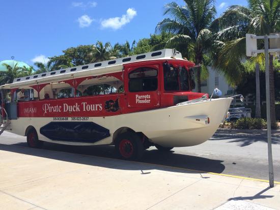 Miami Pirate Duck Tours