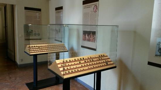 Civico Museo Archeologico Paolo Giovio : Sala dedicata alla numismatica