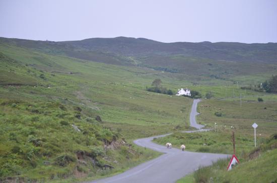 Swordale House : One lane road