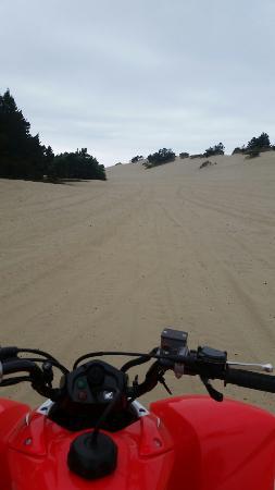 Sandlake Tsunami ATV Rental, LLC: Great riding!