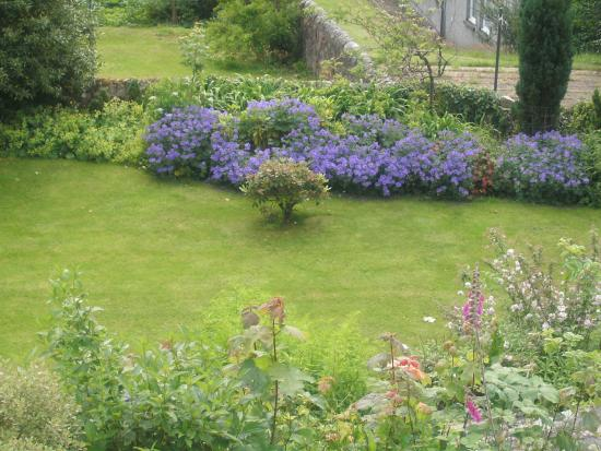 Derrybeg Bed and Breakfast: Derrybeg garden