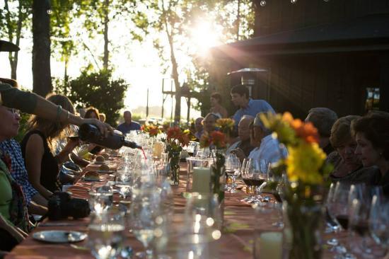 Honig Vineyard & Winery: Solstice dinner