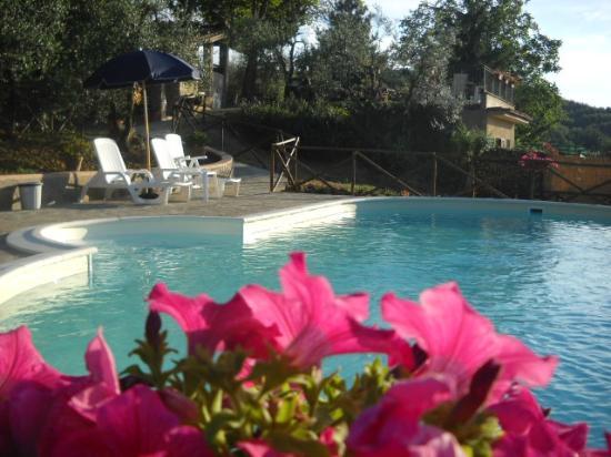 Podere Val di Gallo: piscina