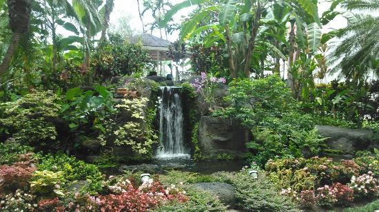 The beautiful waterfall surrounded by lush gorgeous gardens ...