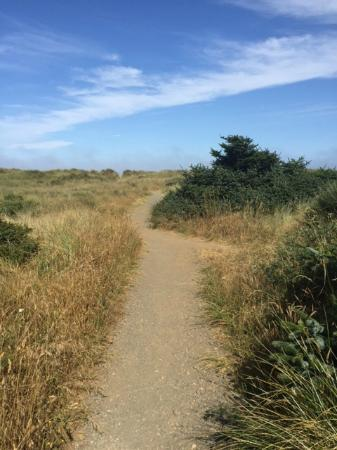 Gold Beach Inn: path to beach