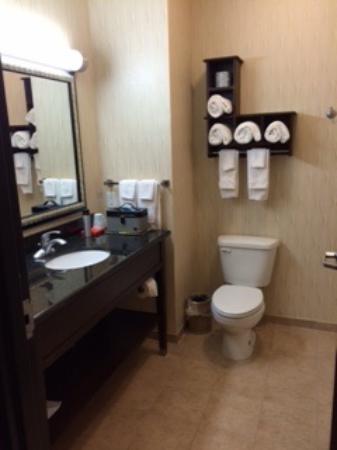 Hampton Inn Sulphur Springs : Great bathrooms