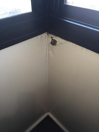 Perisher Manor: Peeling wet walls